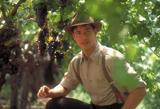Vino&Cinema: una lunga storia d'amore